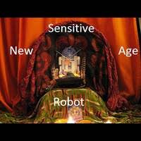 Sensitive New Age Robot's avatar