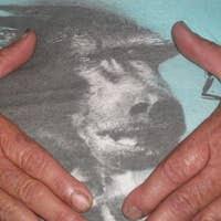 fragilehearts's avatar