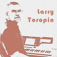 Larry Toropin's avatar