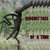 Circuit Tree's avatar