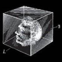 slowvol's avatar